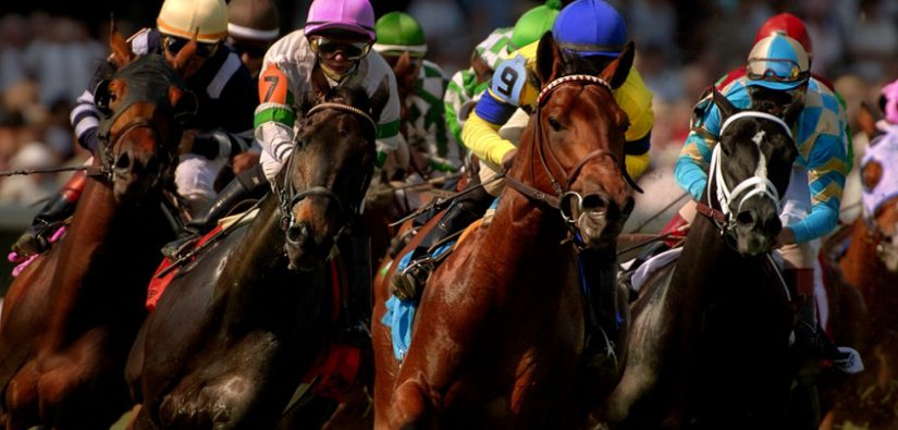 Horse Racing: understand the basics…