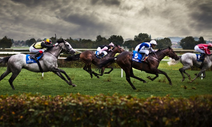 Horse racing information